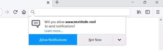 Neatdude.cool Pop-ups